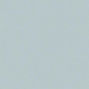 szkło 9006-Grey Metal